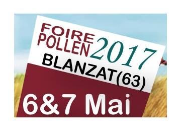 Interview France Bleue et retour sur la Foire Pollen «cru 2017»